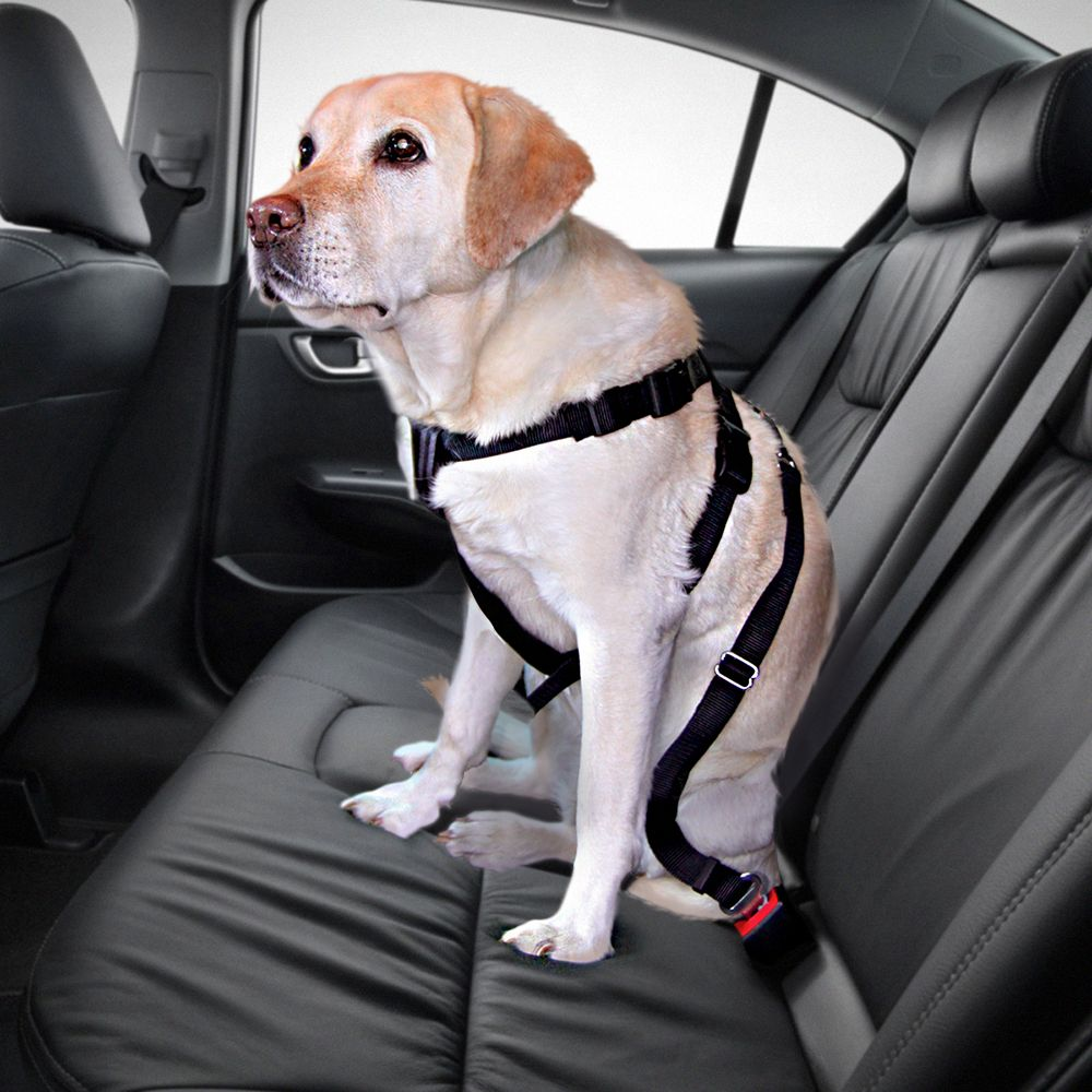 Trixie Dog Car Harness Medium