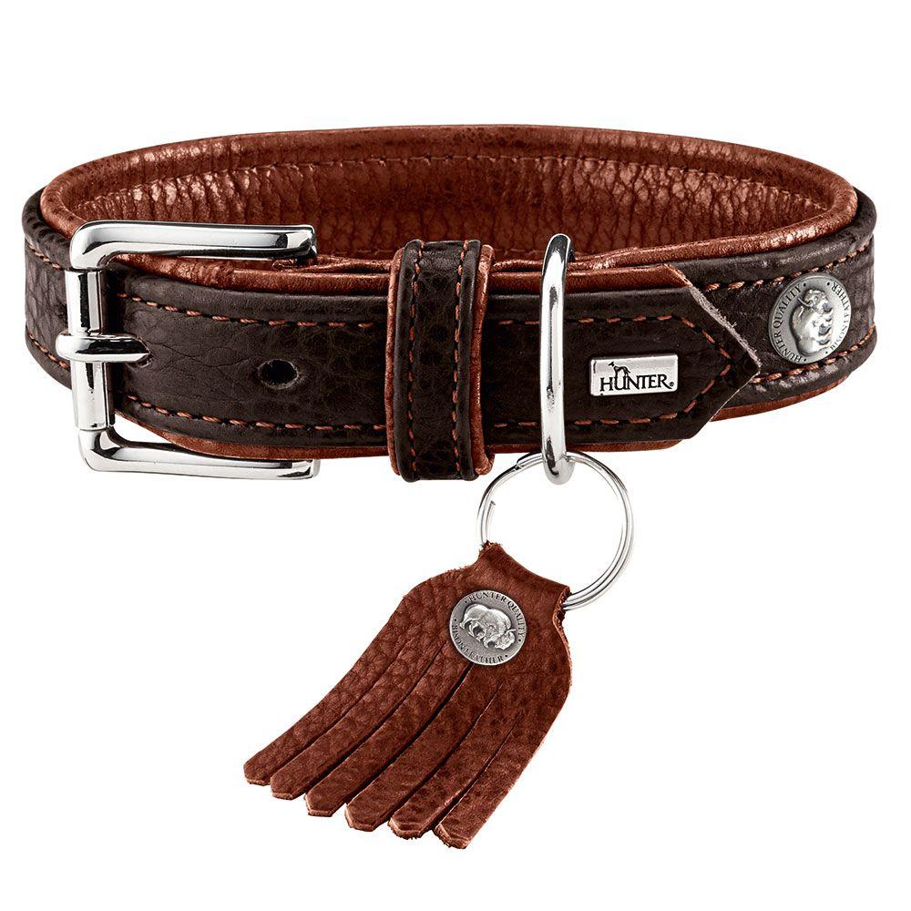 Hunter Cody Dog Collar - Size 50: 37-43cm Neck Circumference, 30mm Width