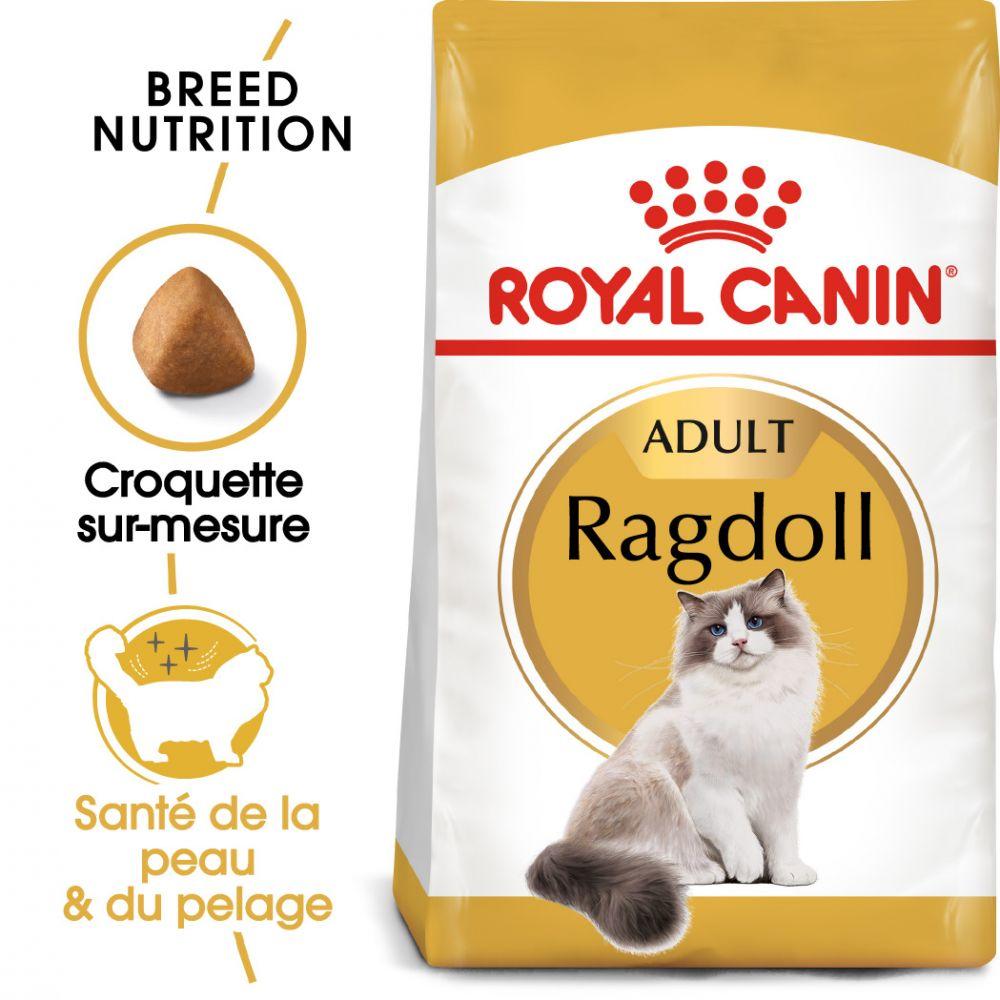 10kg Ragdoll Royal Canin Croquettes pour chat
