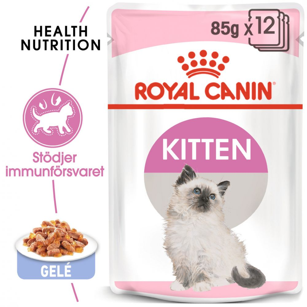 Royal Canin Kitten Instinctive i gelé - 48 x 85 g
