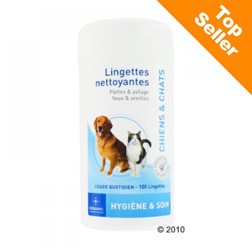 Image of Demavic - Salviette Detergenti - 100 pz