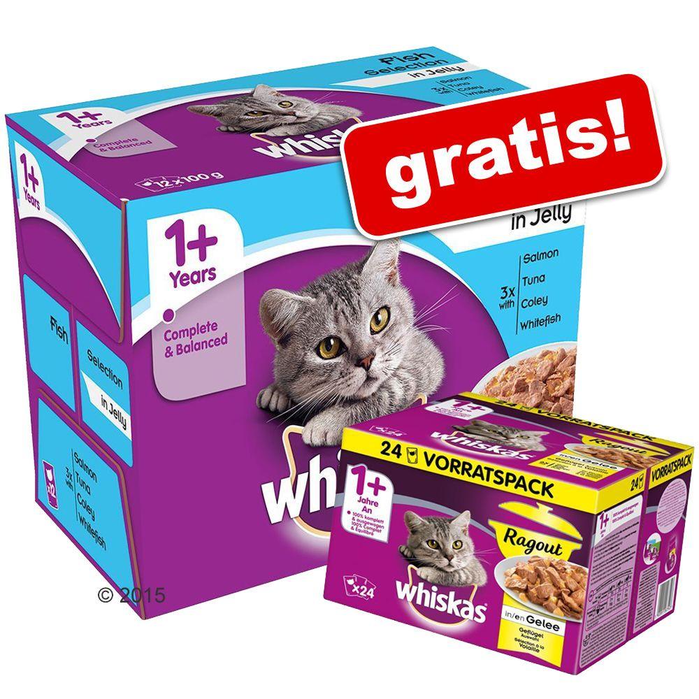 Whiskas, różne rodzaje, 96 saszetek + 24 x 85 g, Whiskas 1+ Ragout gratis! - Adult 1+, Wybór dań rybnych w sosie, 96 x 100 g