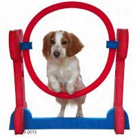 Cerchio agility per addestramento indoor - -  l70 x p32 x h68 cm.