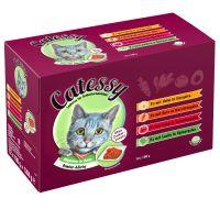 Mixpack Catessy Häppchen in Gelee Gemüse-Allerlei - 12 x 100 g mit 4 verschiedenen Sorten Preisvergleich