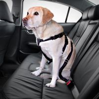 Trixie Dog Car Harness - Size M