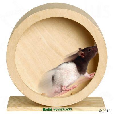 Wonderland motionshjul av trä 29 cm