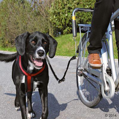 Trixie Biker Set de Luxe -pyöräilytalutin - metallikiinnitys ja talutin pyörään