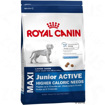 Royal Canin Maxi Junior Active - 15 kg