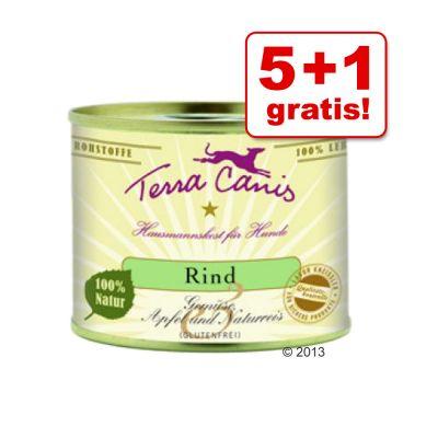 5 + 1 på köpet! 6 x 200 g Terra Canis – Kyckling med amarant, tomater & basilika
