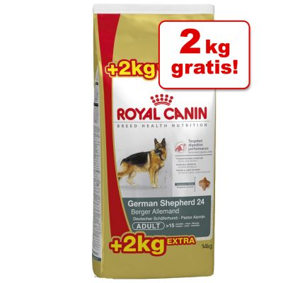 Royal Canin Breed 12 kg + 2 kg på köpet! – Boxer Adult