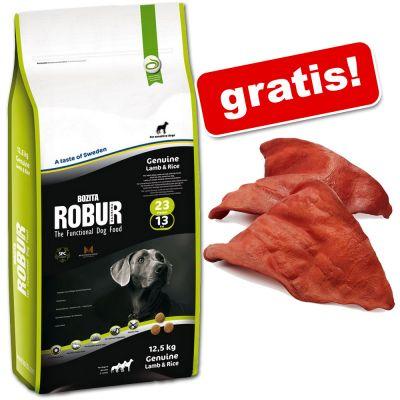 Stor påse Bozita Robur + 10 Rocco torkade öron! - Maintenance 27/15 (15 kg)
