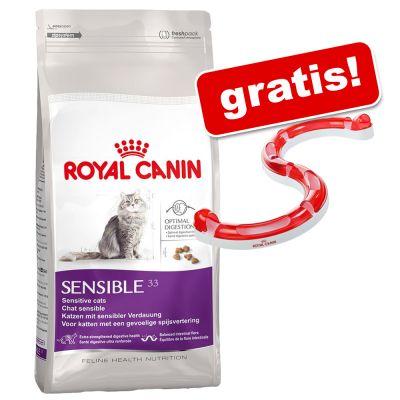 10 kg Royal Canin + Spielschiene