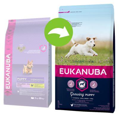 Eukanuba Growing Puppy Small Breed Chicken - säästöpakkaus: 3 x 3 kg