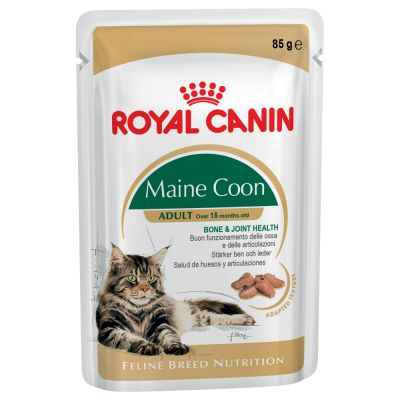 Royal Canin Breed Maine Coon Kattenvoer 24 x 85 g