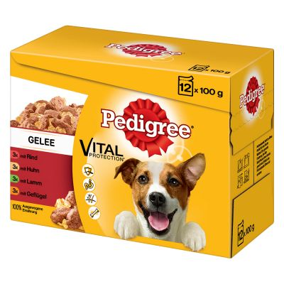 Pedigree Pouch in Jelly -monipakkaus – 96 x 100 g