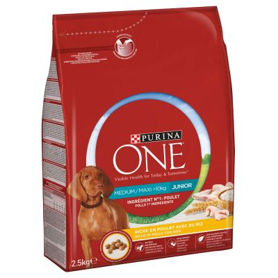 Purina ONE Medium/Maxi Junior Chicken - 2,5 kg