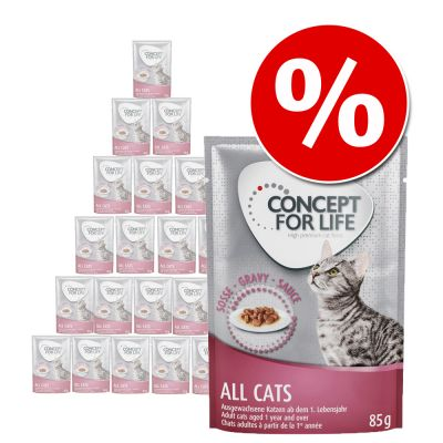 Concept for Life -säästöpakkaus 24 x 85 g - Sensitive Cats in Jelly