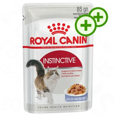 2x zooPisteitä: Royal Canin kissanruoka 24 x 85 g - Sterilised in Gravy
