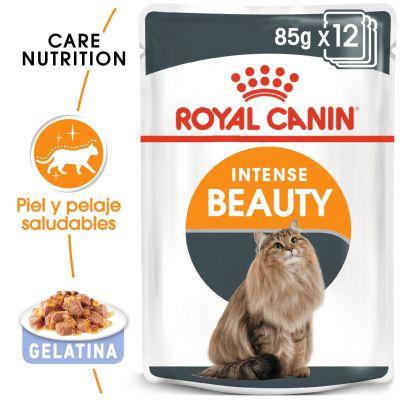 Royal Canin Intense Beauty en gelatina - 24 x 85 g - Pack Ahorro