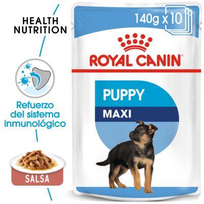 Royal Canin Maxi Puppy comida húmeda para perros - 40 x 140 g - Megapack
