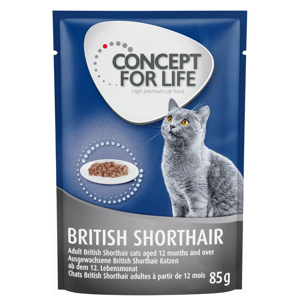 Concept for Life British Shorthair Adult Ragout - 48 x 85 g