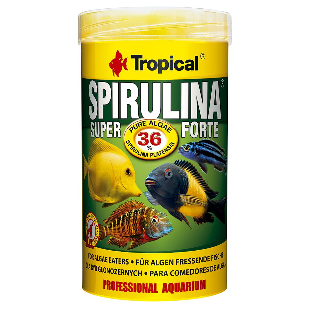 Tropical Super Spirulina Forte 36% - 5 l
