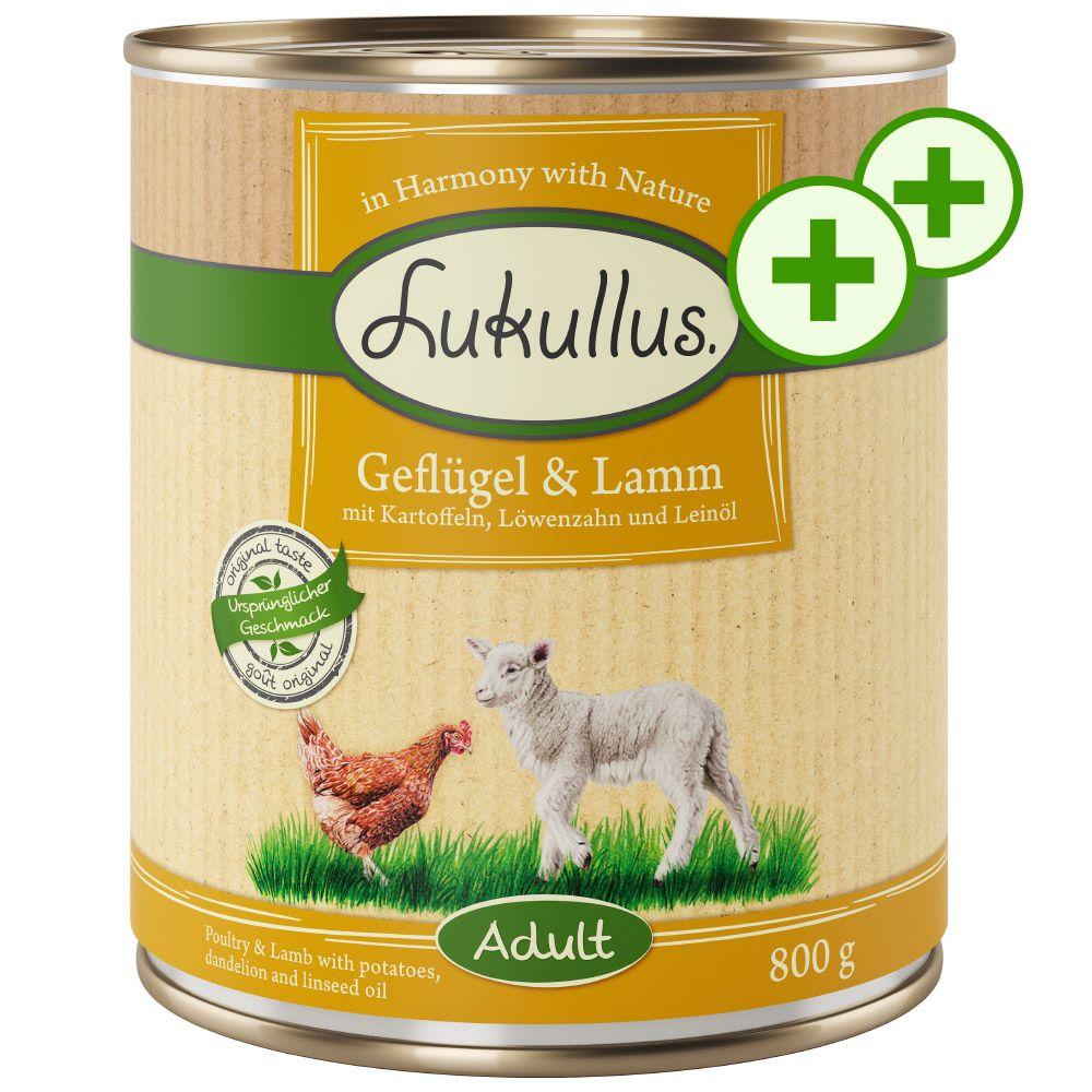 Dubbla bonuspoäng på Lukullus hundfoder 24 x 800 g - Lax & kyckling