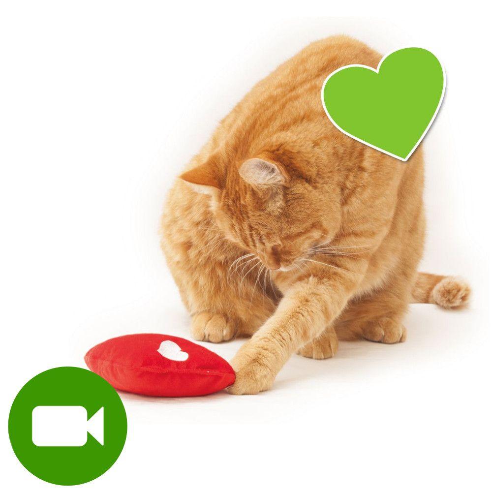 zoolove zabawka dla kota serce Wellness - 1 sztuka
