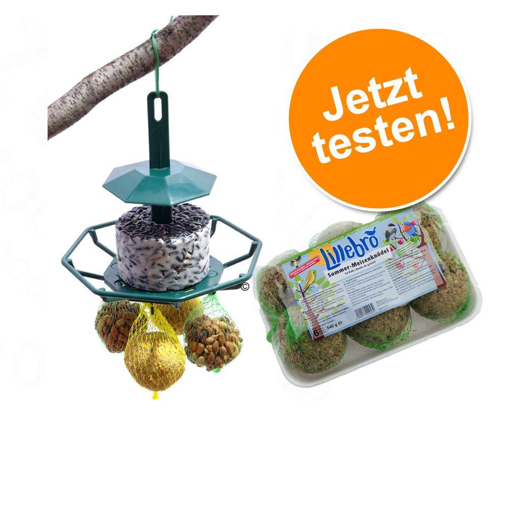 Mixed Feeder + Nachfüllpack Meisenknödel zum So...