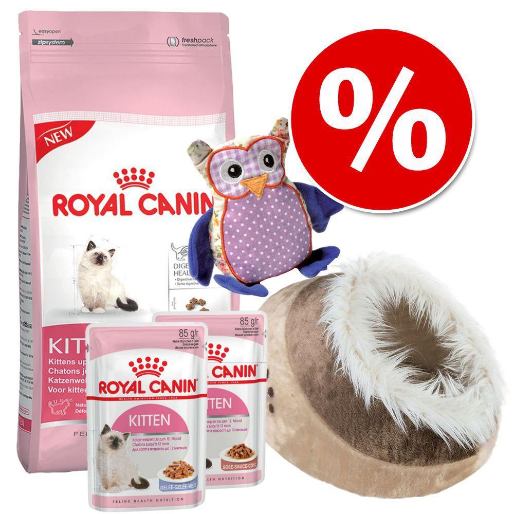 Royal Canin Kitten Paket - 5 delar
