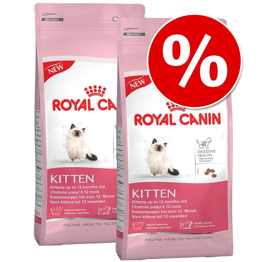 royal canin maine coon kitten 36 10 kg im preisvergleich. Black Bedroom Furniture Sets. Home Design Ideas