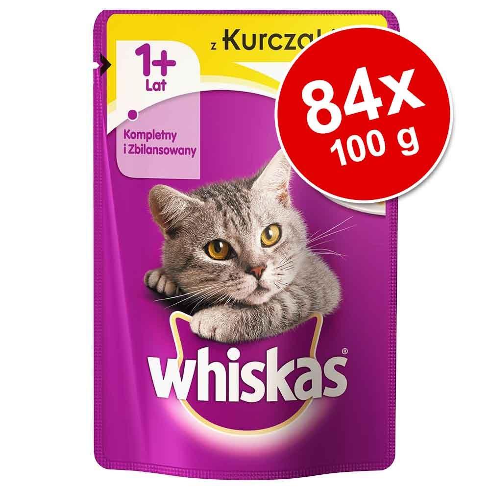 Megapakiet Whiskas 1+ sas