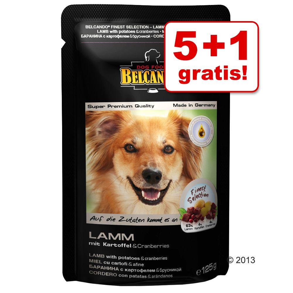 5 + 1 gratis! 6 x 125 g Belcando Pouches im gemischten Paket - Belcando Pouches (5 Sorten)