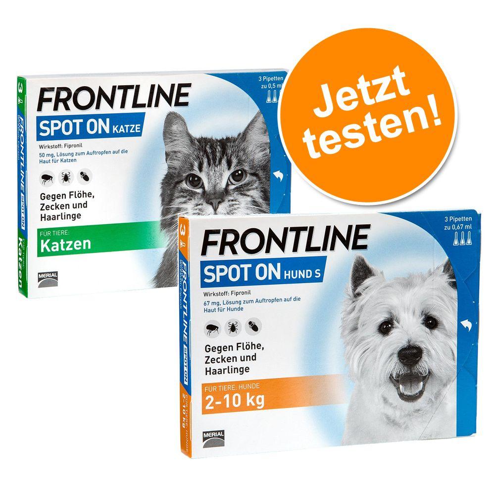 Frontline® Spot Set für Katzen & kleine Hunde -...