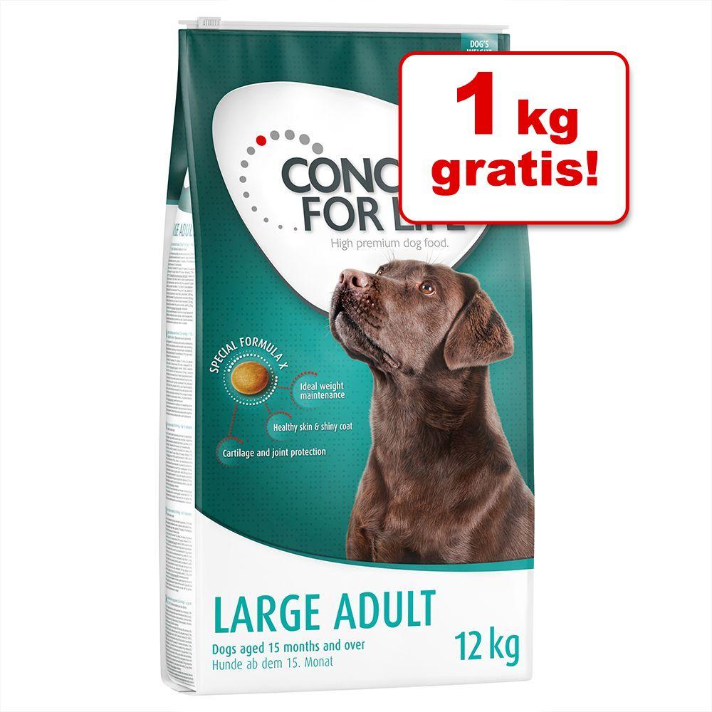 11 kg + 1 kg på Köpet! Concept for Life hundfoder - Large Junior