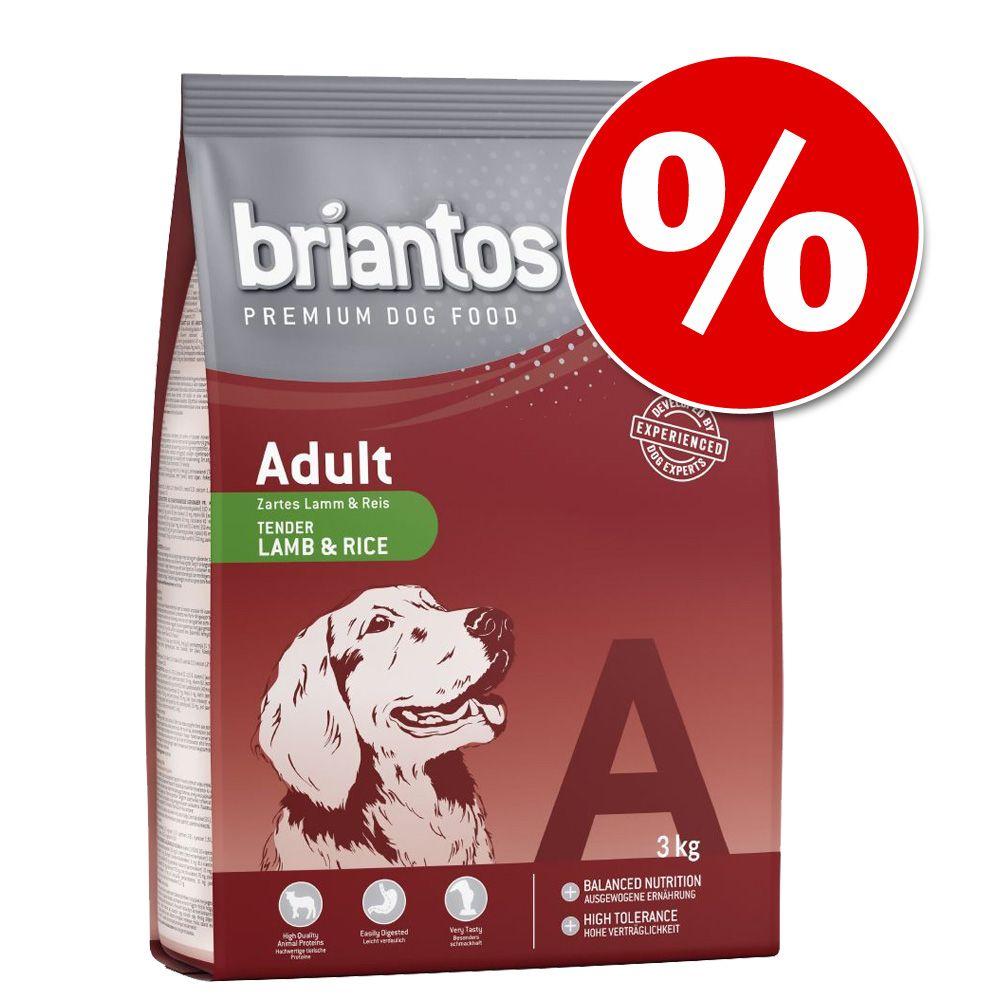 3 kg Briantos w super cenie! - Adult, kurczak & ryż