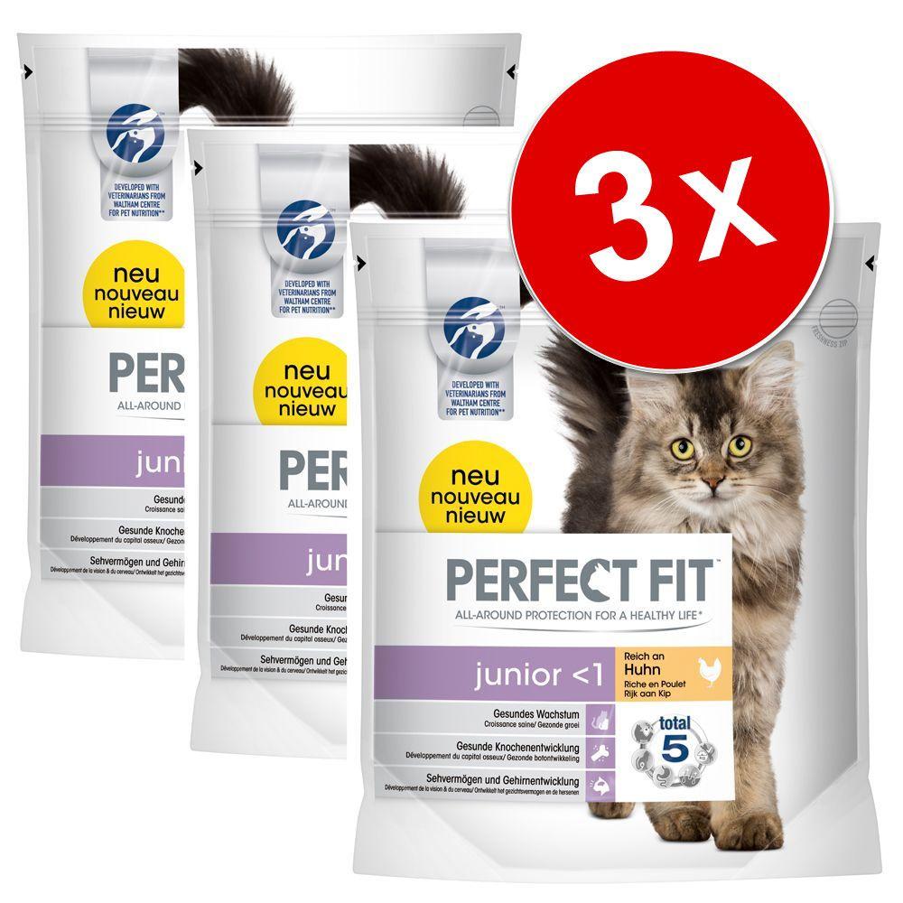 Chat Croquettes Perfect Fit Lots économiques de croquettes pour chat Perfect Fit