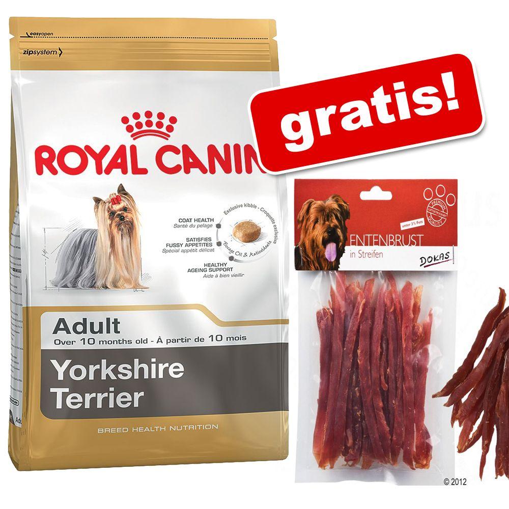 3 kg Royal Canin Breed + Dokas paski z kaczki, półwilgotne, 70 g gratis! - Shih Tzu Junior, 2 x 1,5 kg