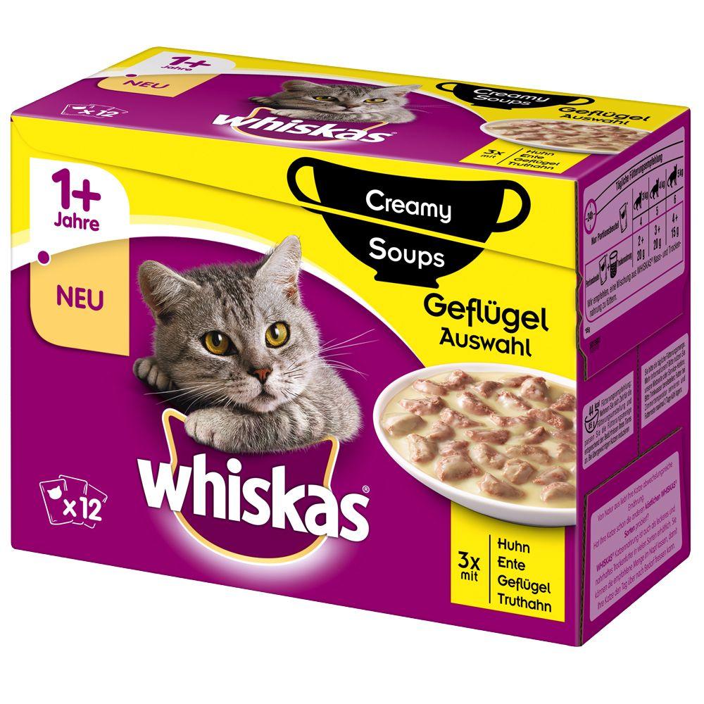 Whiskas 1+ Creamy Soup 12 x 85 g – Fjäderfävarianter (kyckling anka fågelkött kalkon)