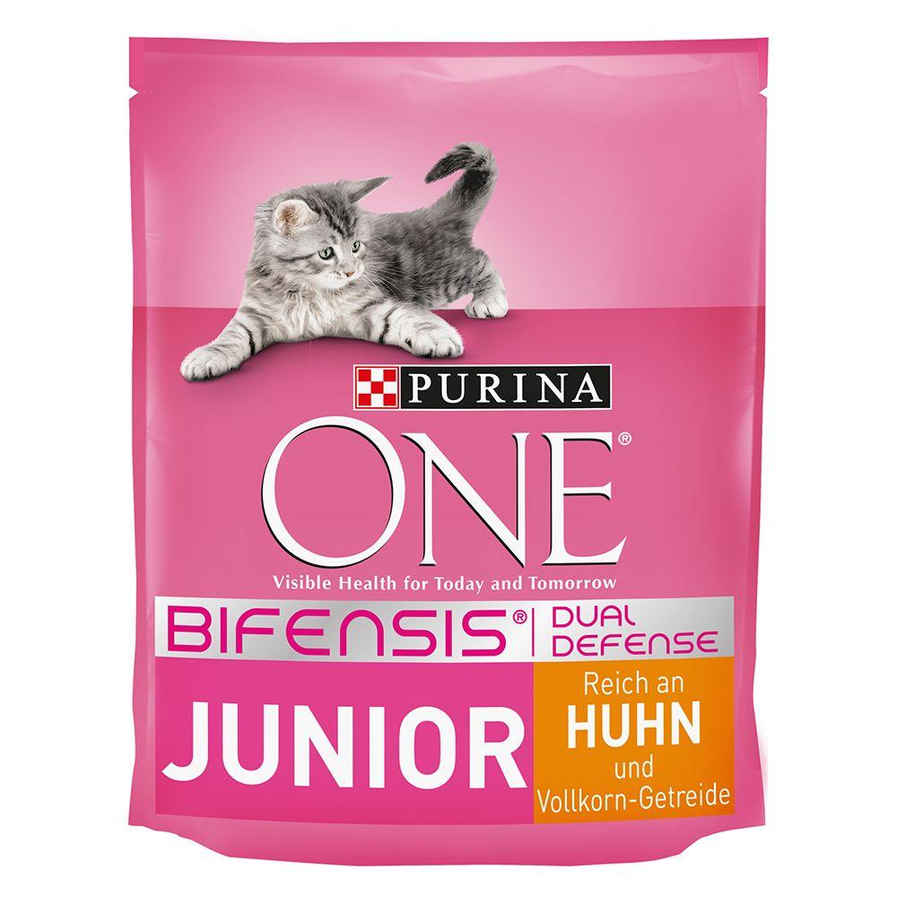 Purina ONE Junior - 800 g