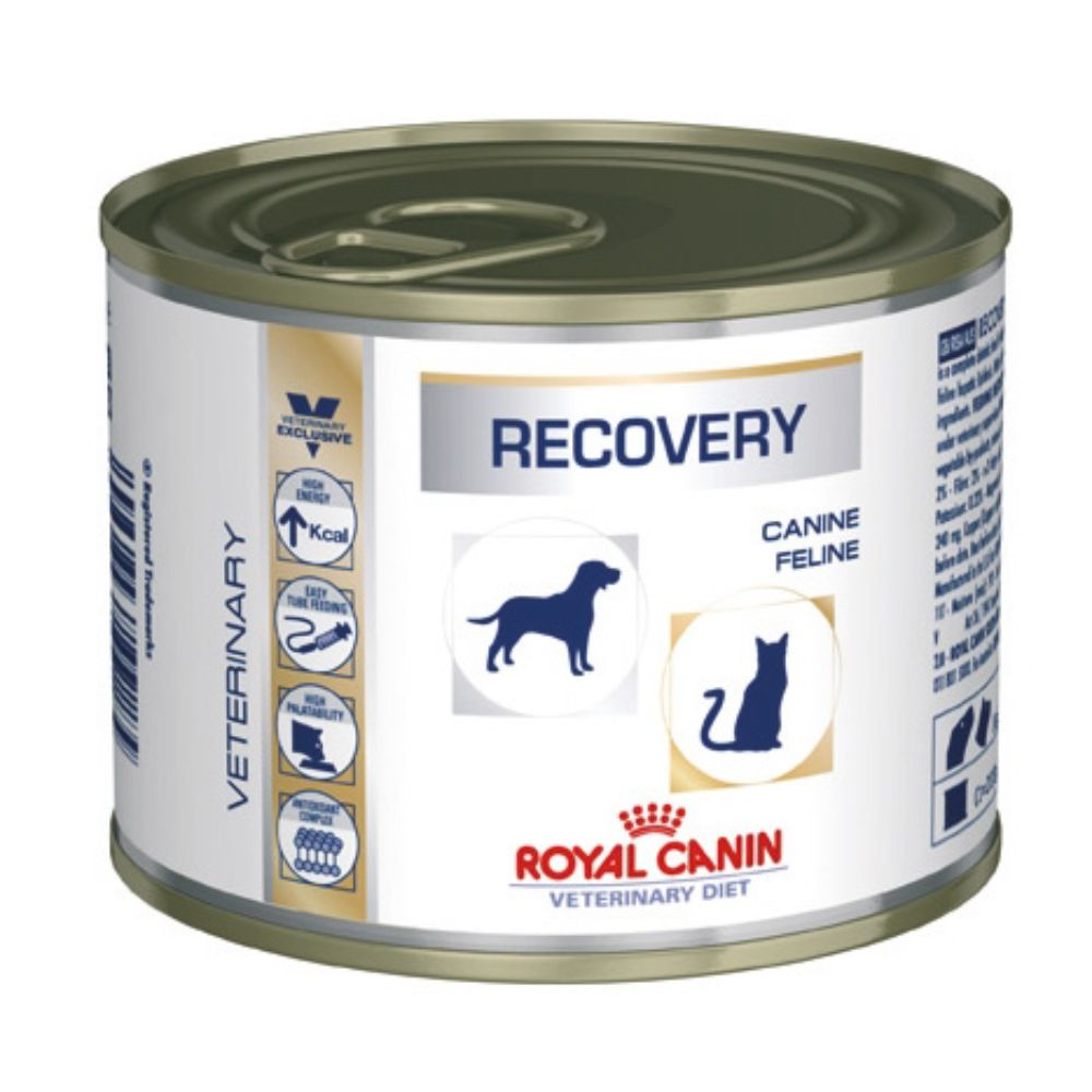 12x195g Recovery Dog Cat Veterinary Diet Royal Canin Wet Food
