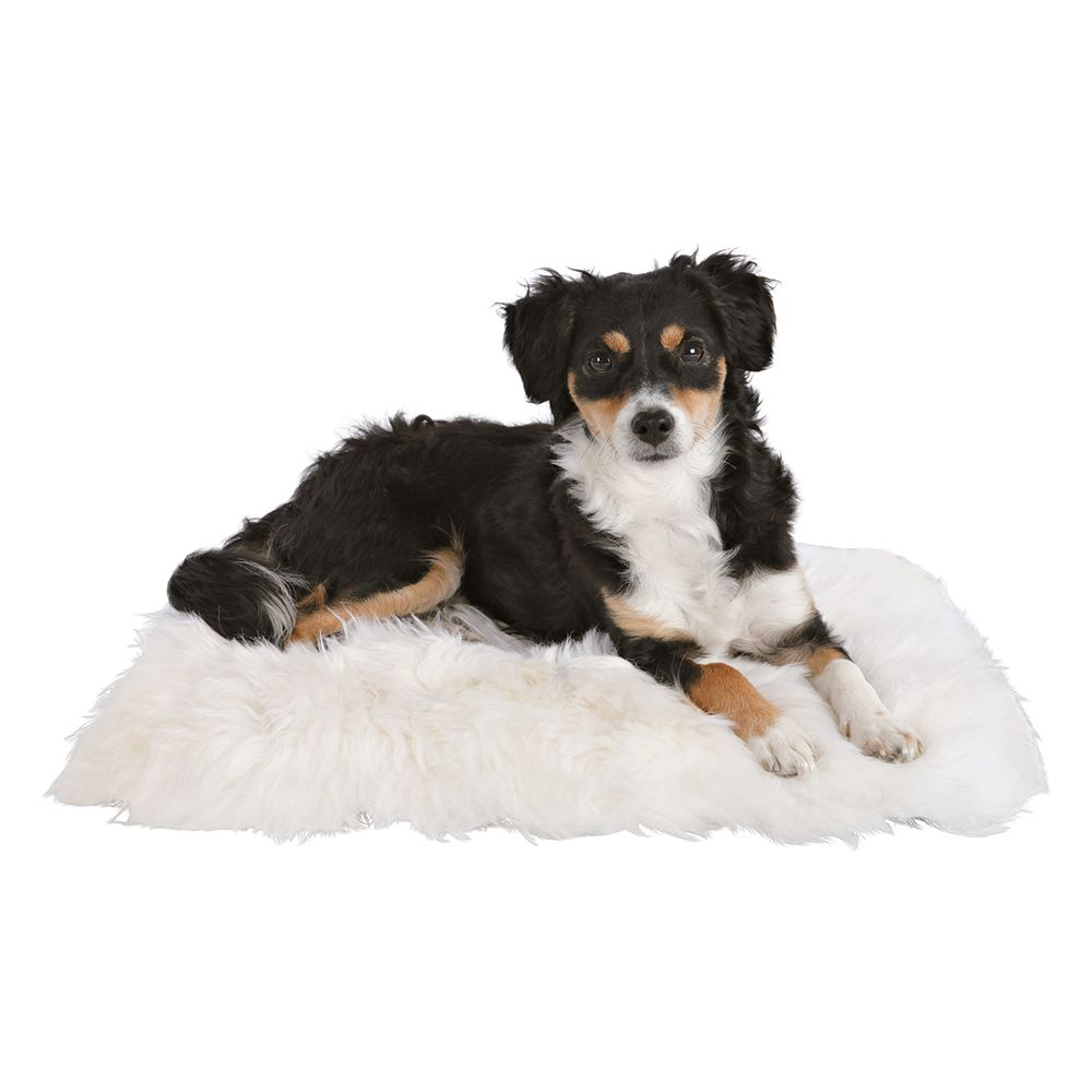 Trixie Sheepskin Cat Cushion - White - 45 x 45 cm (L x W)