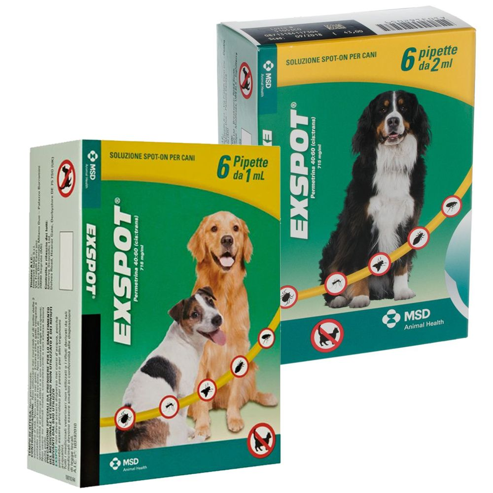 Image of Exspot Spot-on per cani - Set %: 12 pipette (cani > 15 kg)