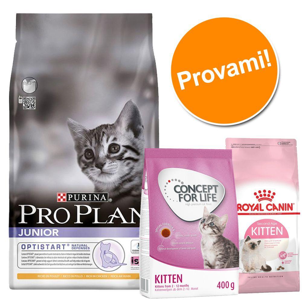 Image of Set per gattini Pro Plan Junior, Royal Canin & Concept for Life Kitten - 3 pz