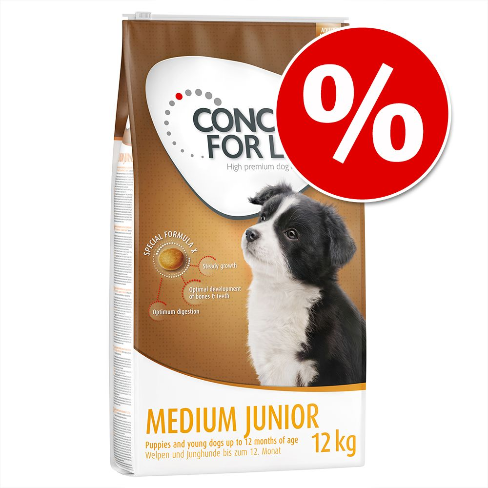 Chien Croquettes ★ Concept for Life Concept for Life offre
