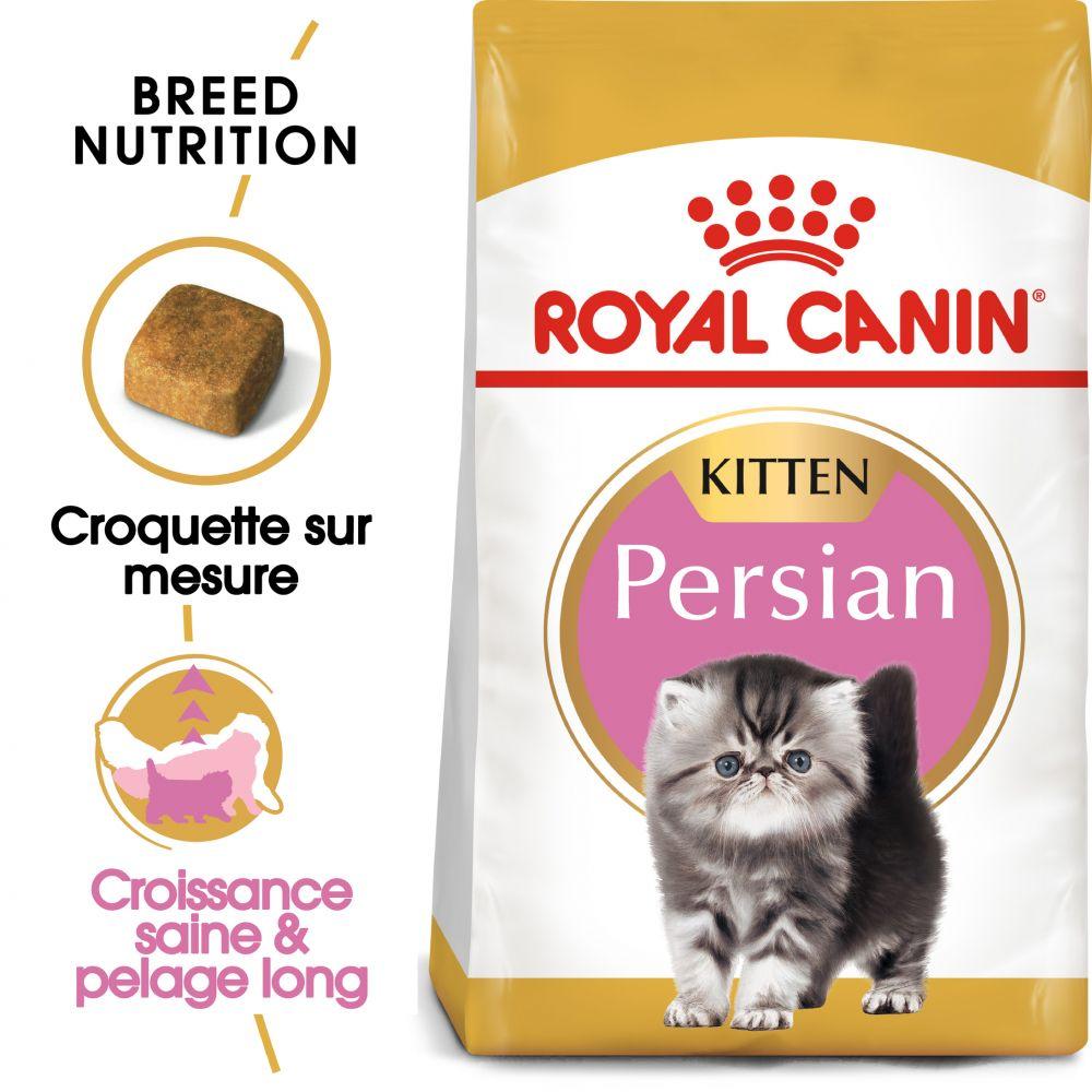 4kg Kitten Persian Royal Canin Croquettes pour chaton