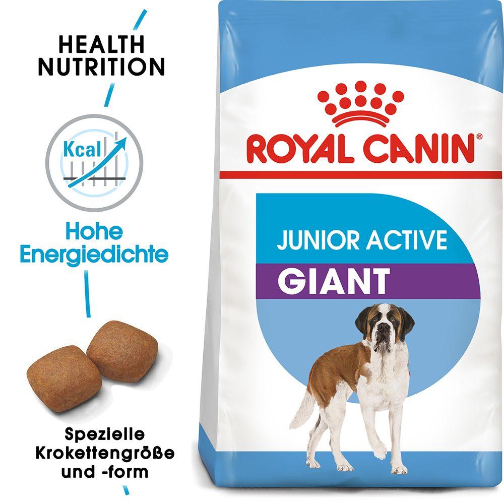 Royal Canin Giant Junior Active - Ekonomipack: 2 x 15 kg