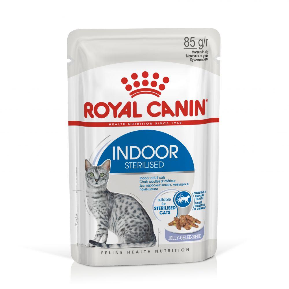 Royal Canin Indoor Sterilised gelé - 48 x 85 g