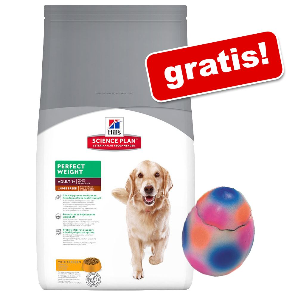 Hill's Science Plan torrfoder + Latex Pop-Up-ägg på köpet! - Puppy Healthy Development Large (11 kg)