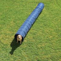 Complete Dog Agility Course - 4 Agility Equipments